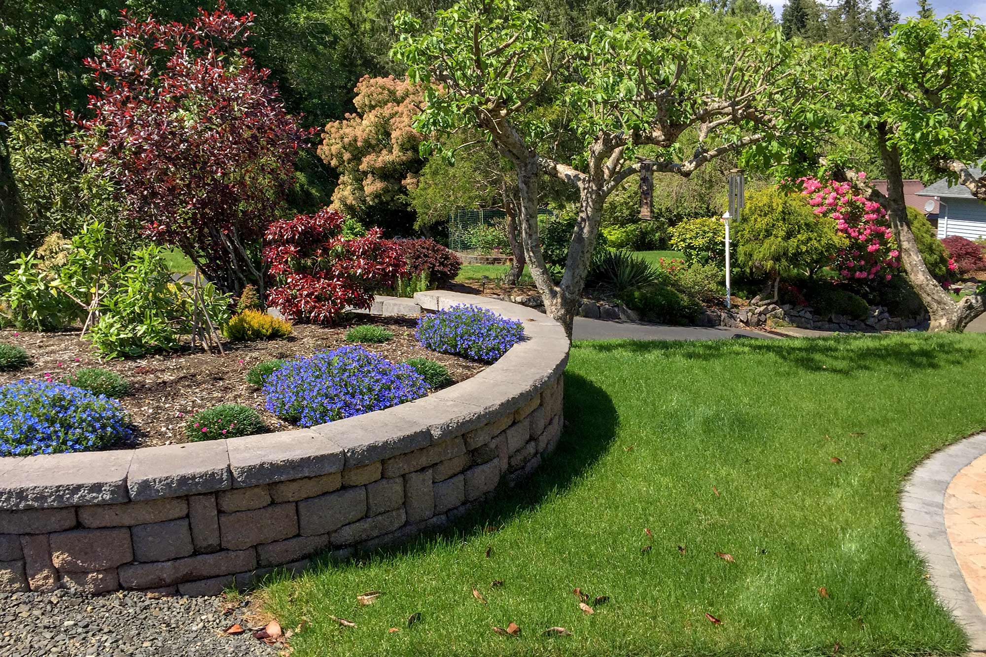 Shelton area landscaping project